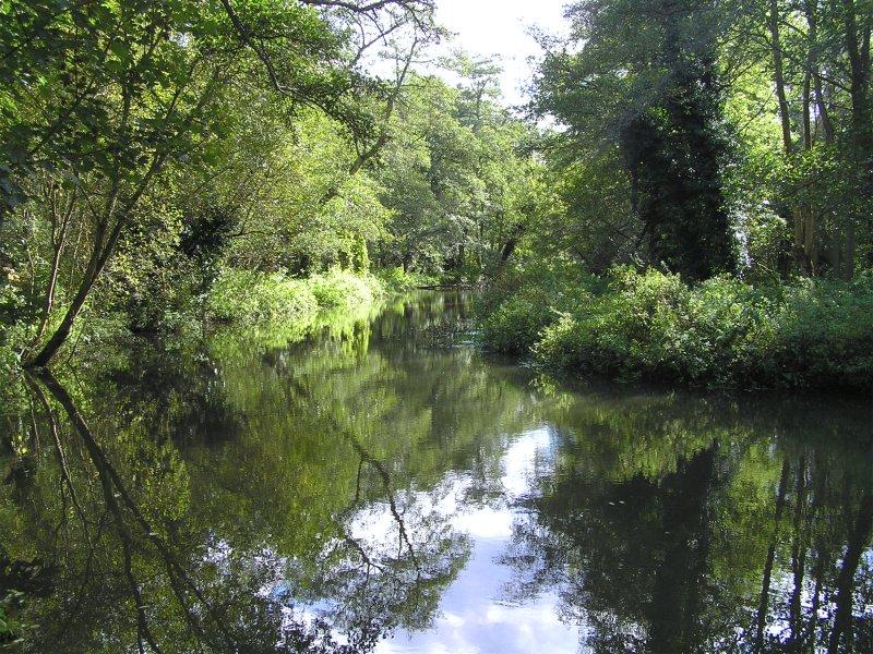 River Wey Moor Park