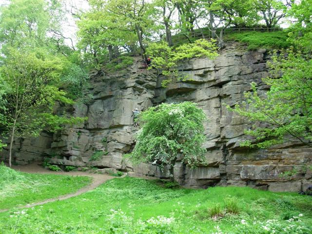 Rock climbing in Causey Arch Wood - geograph.org.uk - 444757