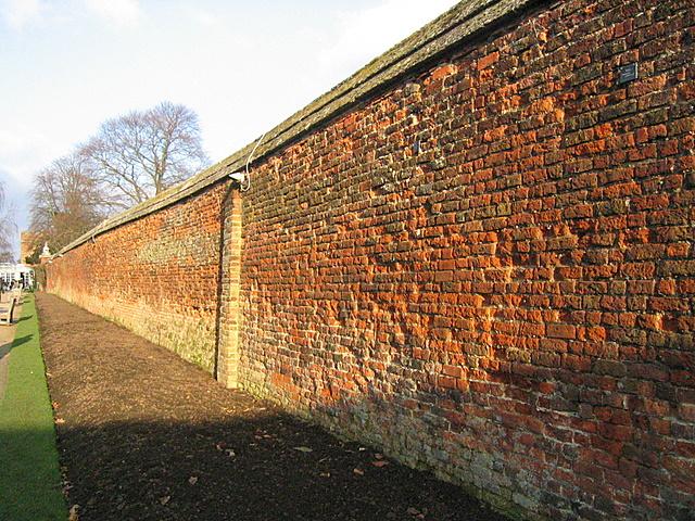 File Rose Garden Wall Hampton Court Palace Geograph Org