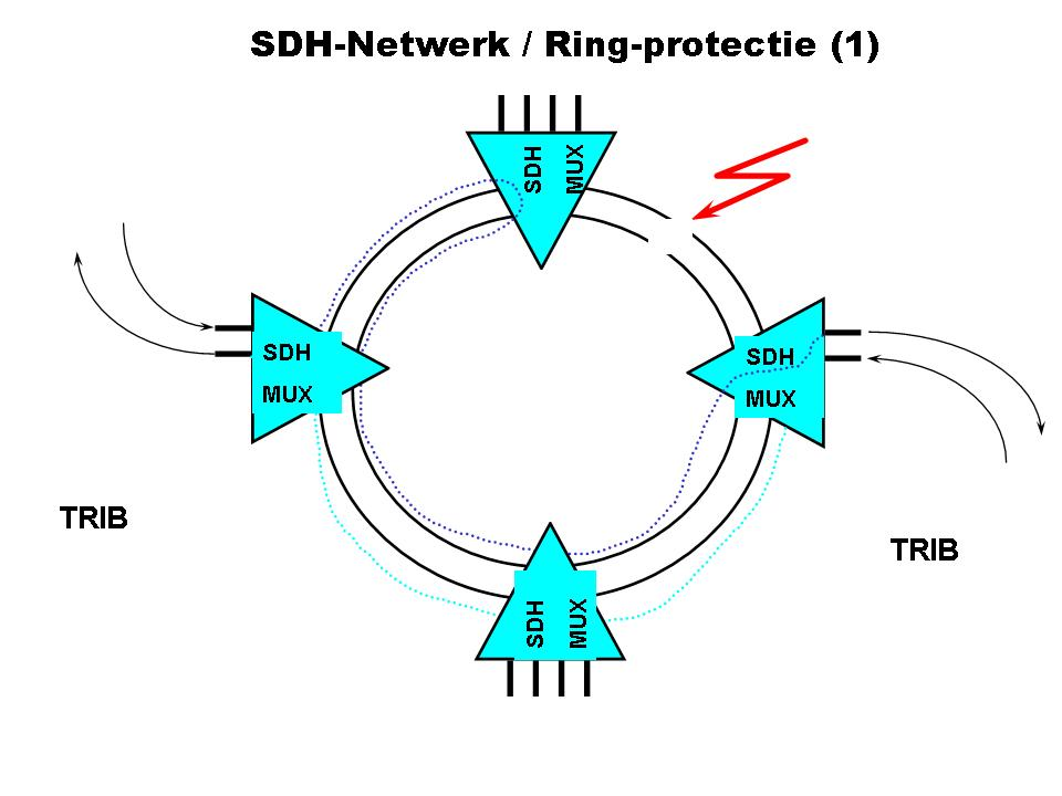 Ring Size Charts: SDH ring structuur.jpg - Wikimedia Commons,Chart