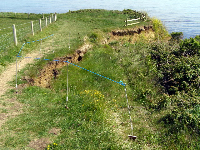 Slipping clifftop, Bran Point - geograph.org.uk - 1321926