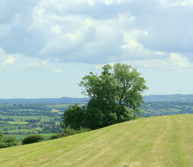 South on Maes Knoll - geograph.org.uk - 1384630