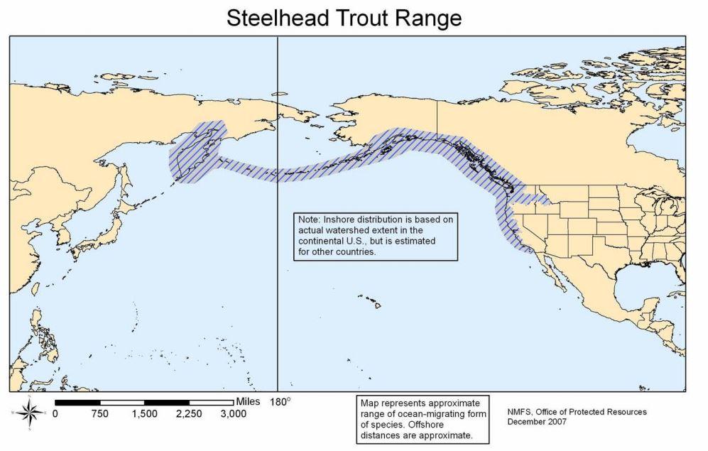 Map of native range of anadromous form-steelhead