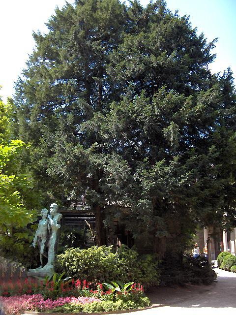 If commun wiktionnaire for Jardin wiktionnaire
