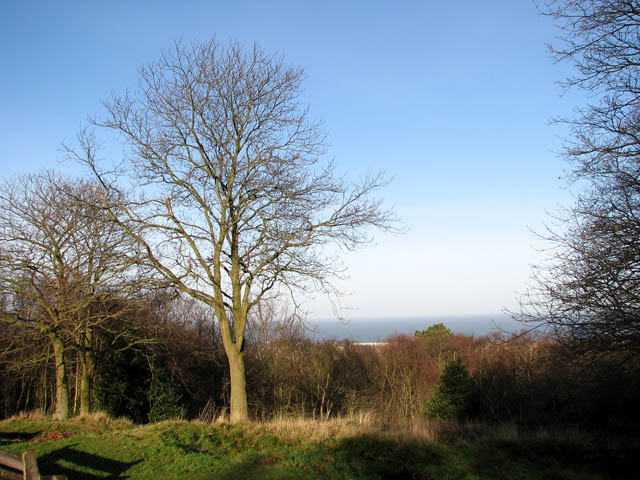 View north from Beacon Hill - geograph.org.uk - 1085371