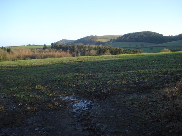 View to May Hill and Goat Hill - geograph.org.uk - 653599