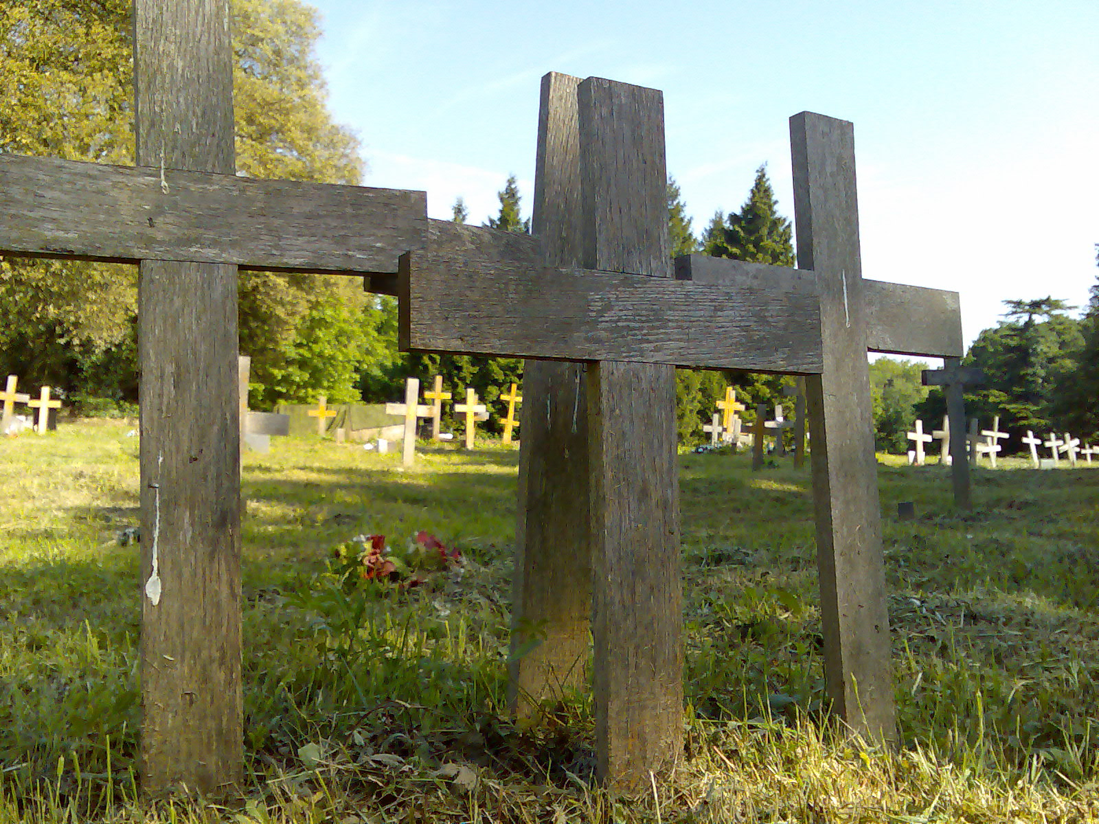 Filewooden Crosses In St Pancras Islington Cemeteryjpg