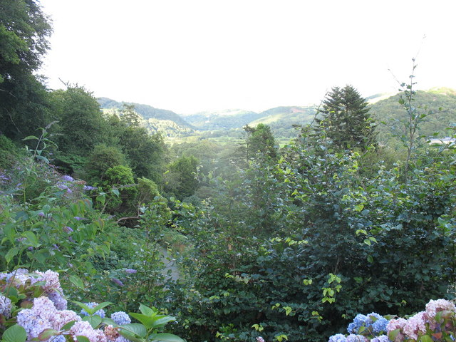 Woodland overlooking the Vale of Maentwrog - geograph.org.uk - 545162