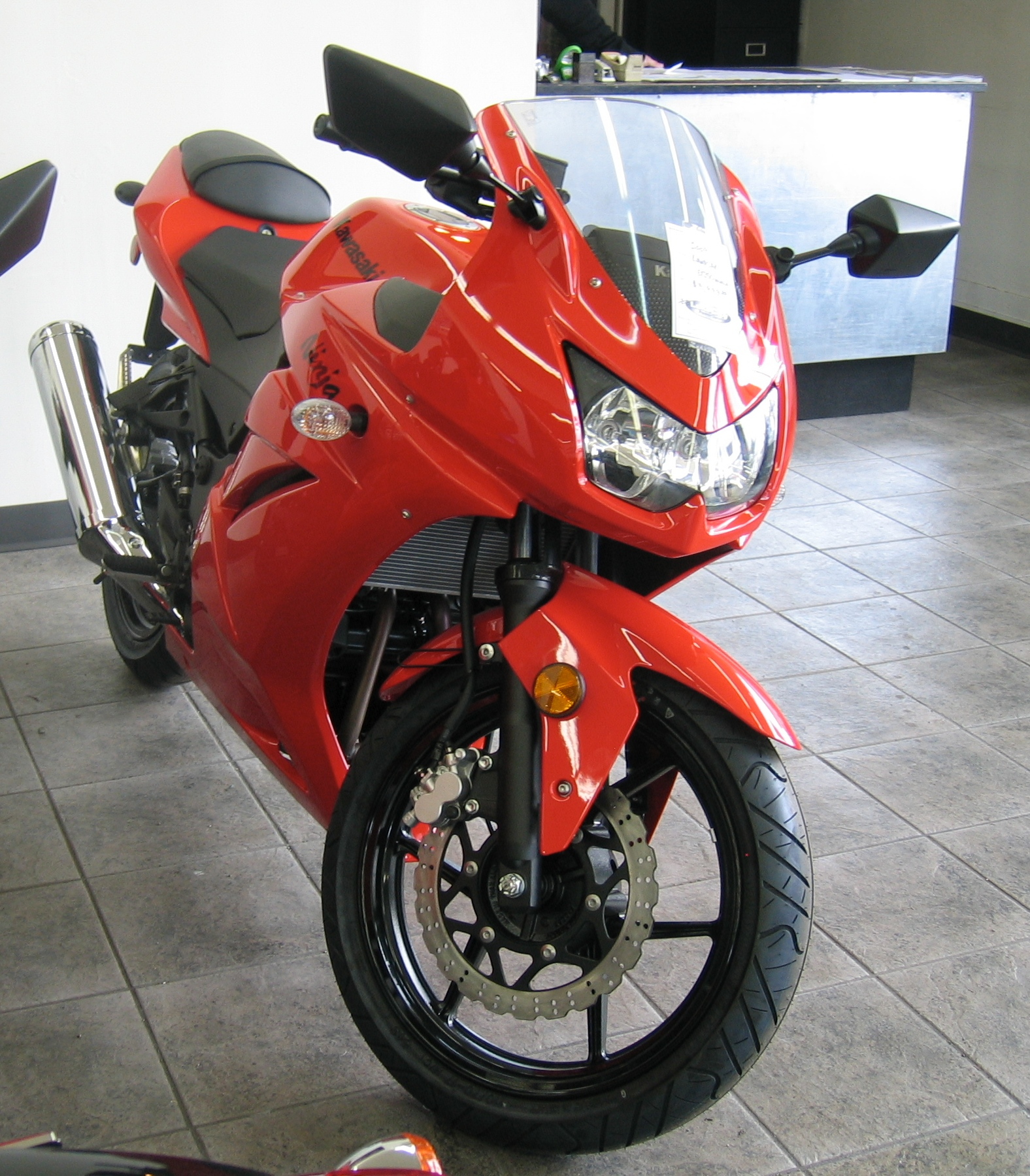 2009 Kawasaki Ninja 250R Picture