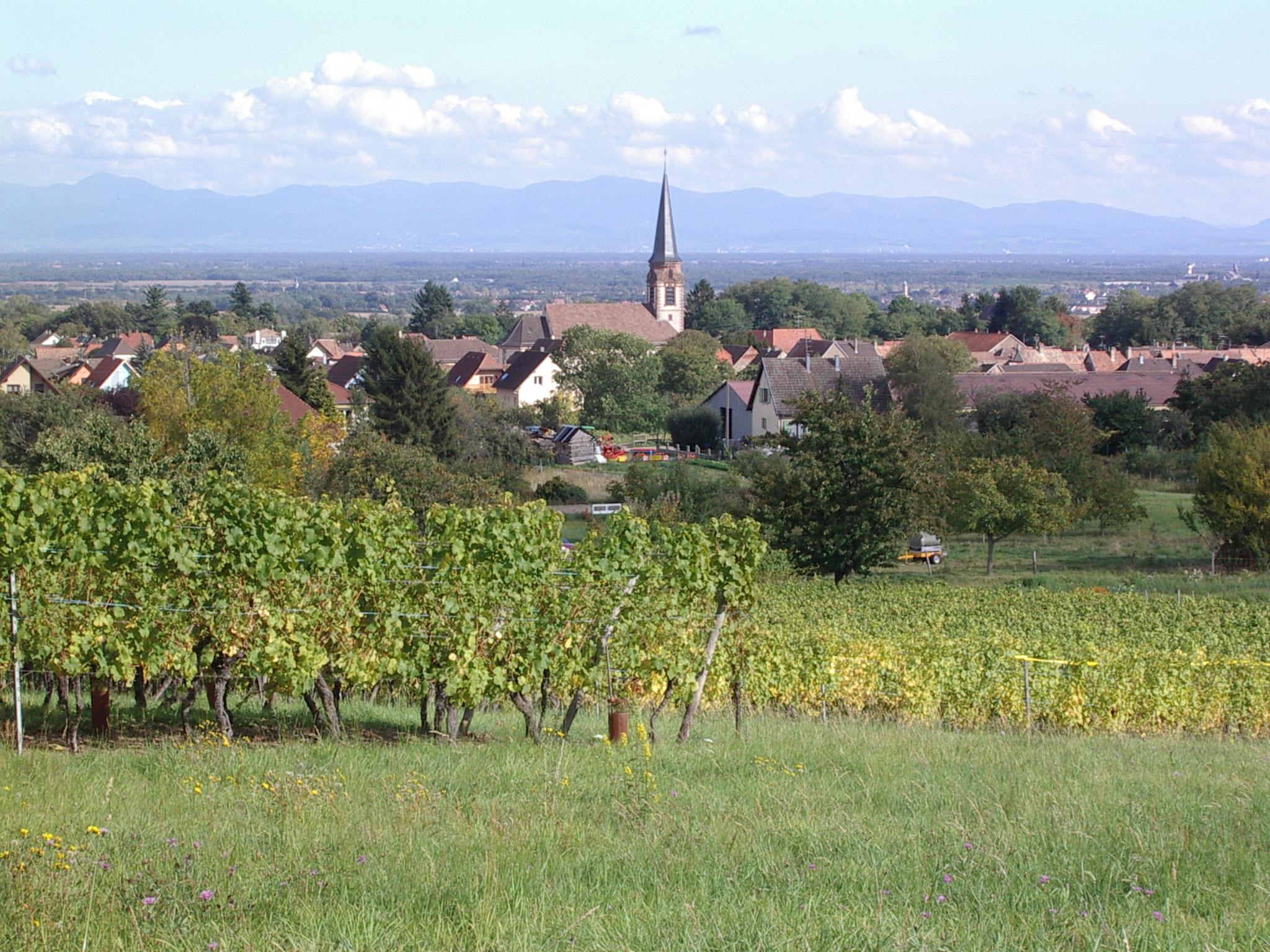 Wuenheim