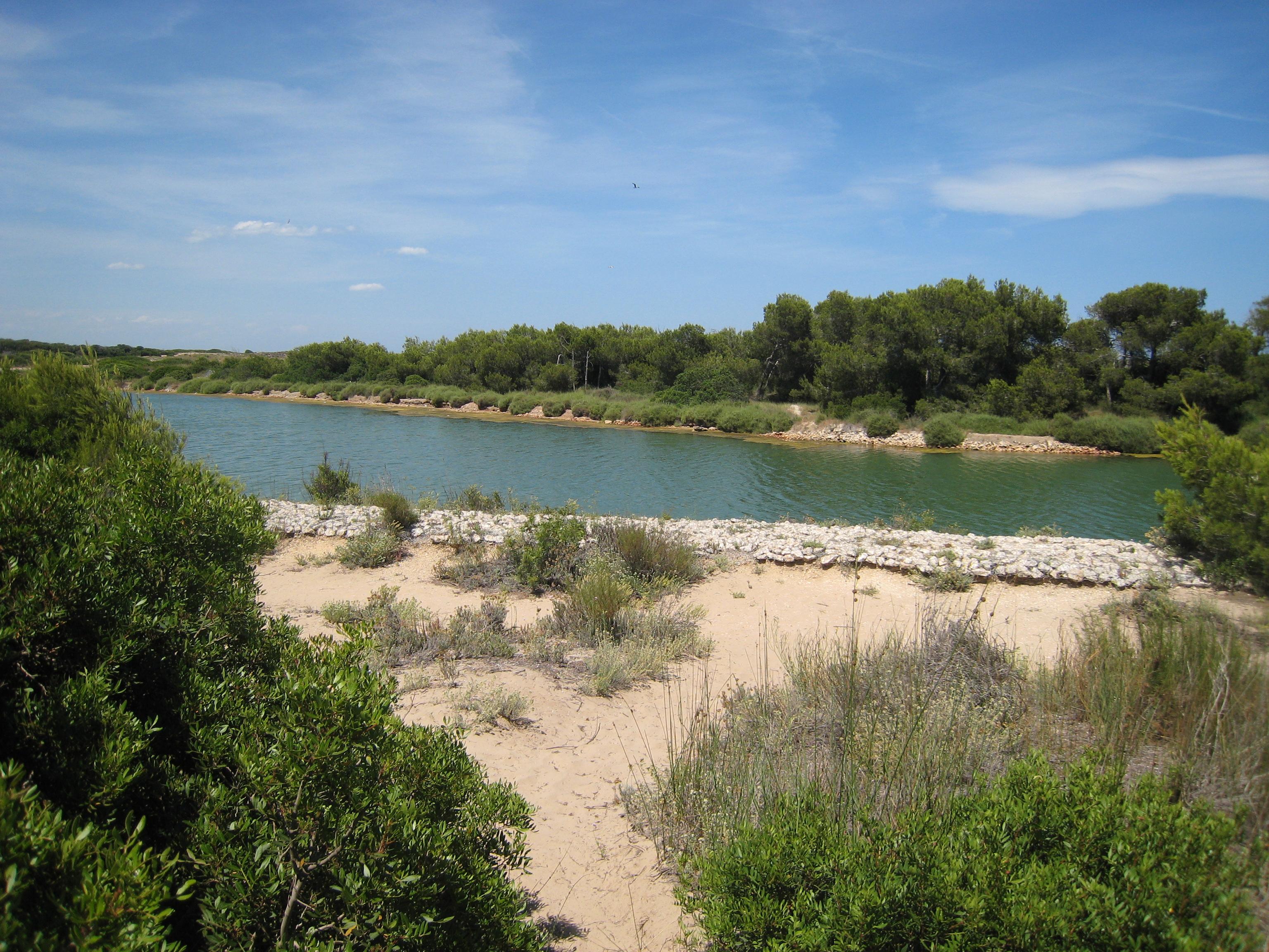 Albufera Natural Park Valencia