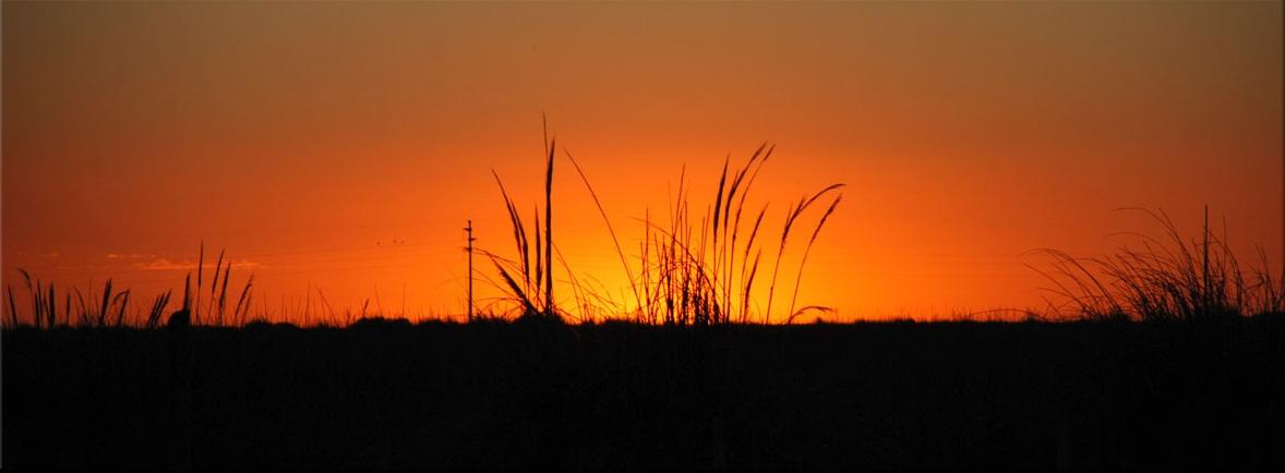 Argentina en la reserva ecoloacutegica - 2 4