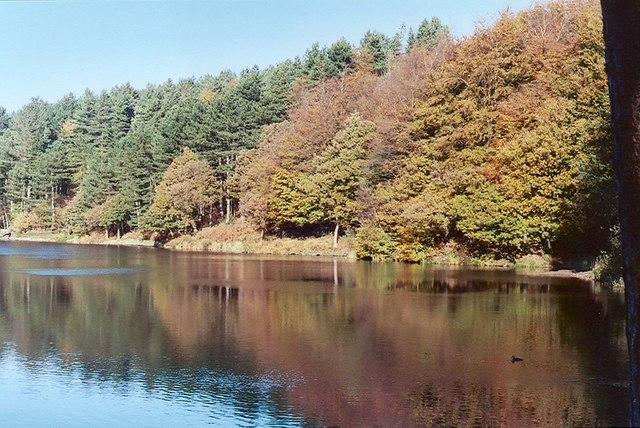 Autumn view at Roddlesworth Reservoir - geograph.org.uk - 729778