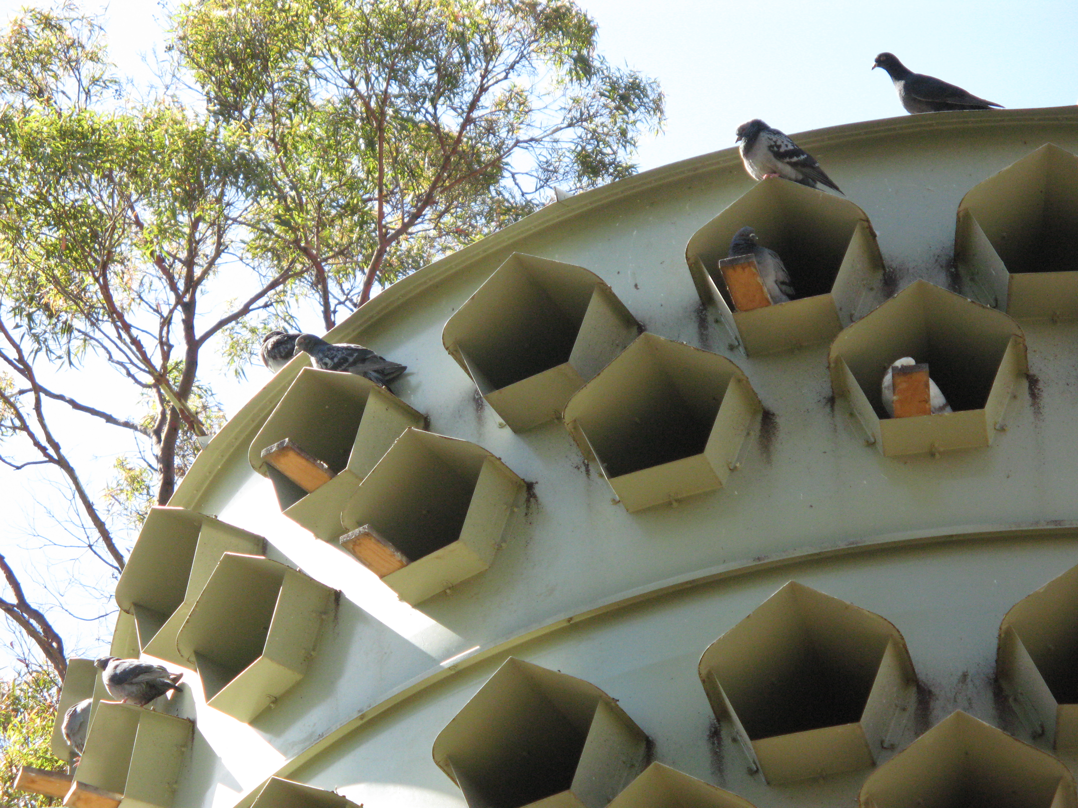 Pigeon house plans and photos - Pigeon House Plans Free