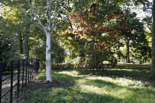 Batsford Arboretum in Autumn - geograph.org.uk - 1527766
