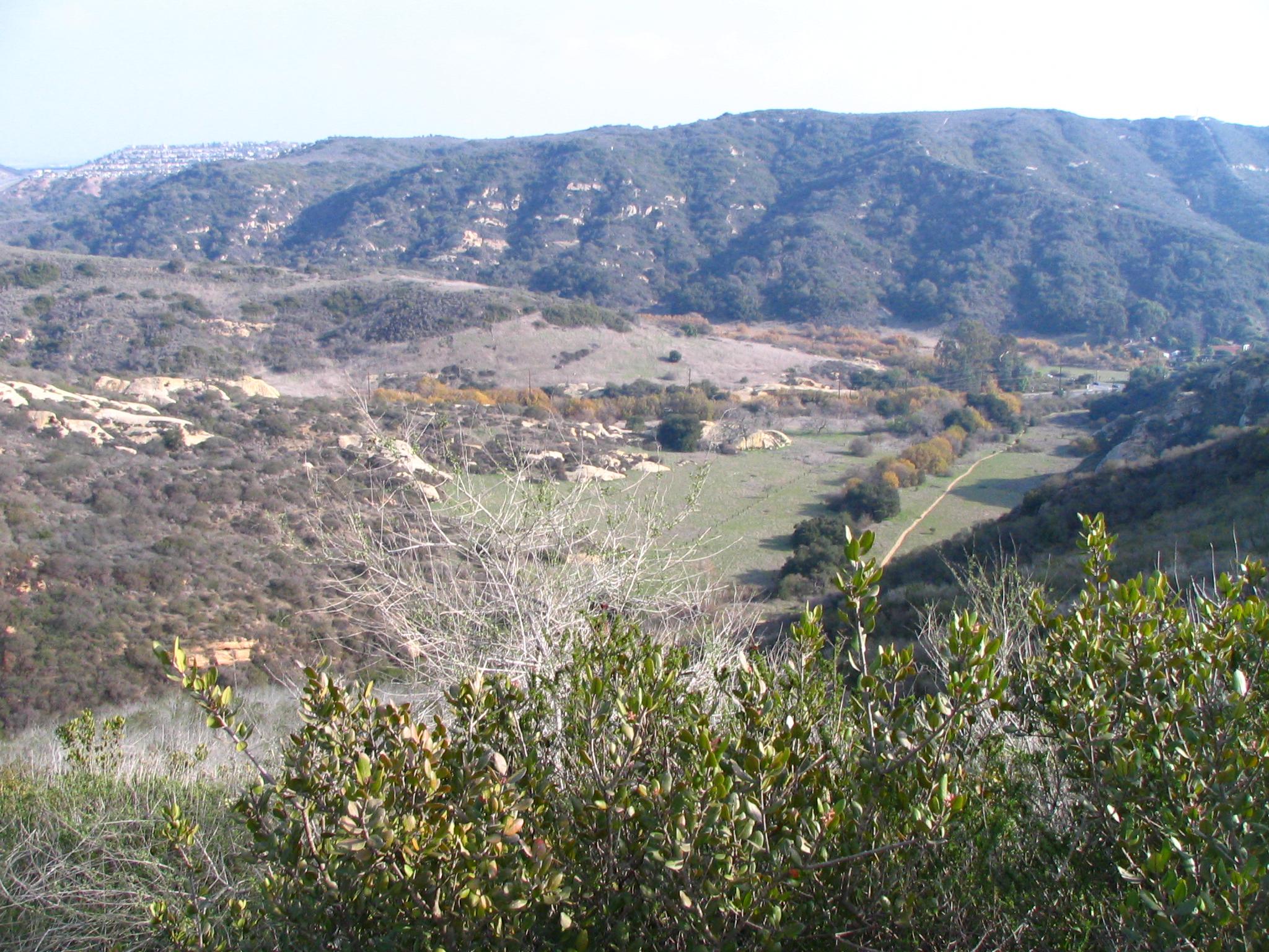camarillo canyon.jpg