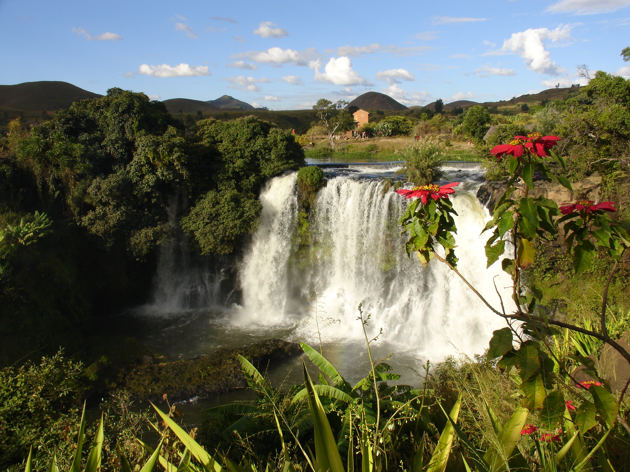 Lilly De La Chute Waterfall Madagascar