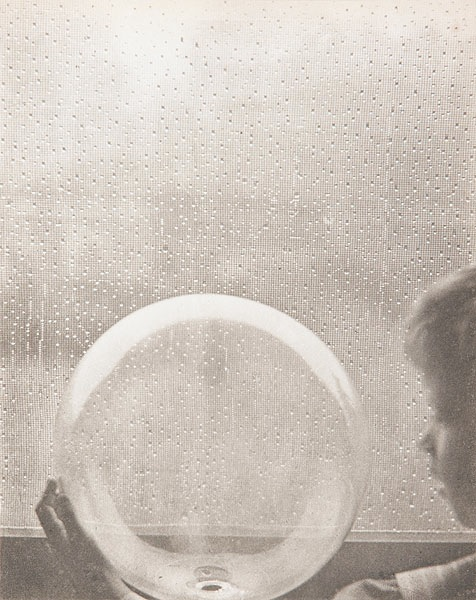 Файл:Clarence H. White (1871-1925)- Drops of rain (1903).jpg