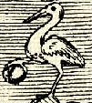 Daru (heraldika).PNG