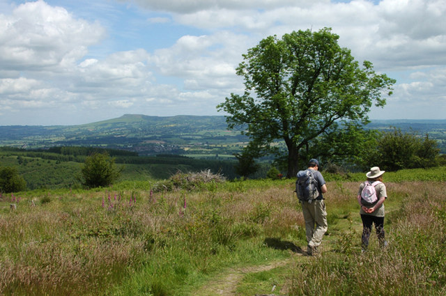 Descending the Mortimer Trail - geograph.org.uk - 1369518