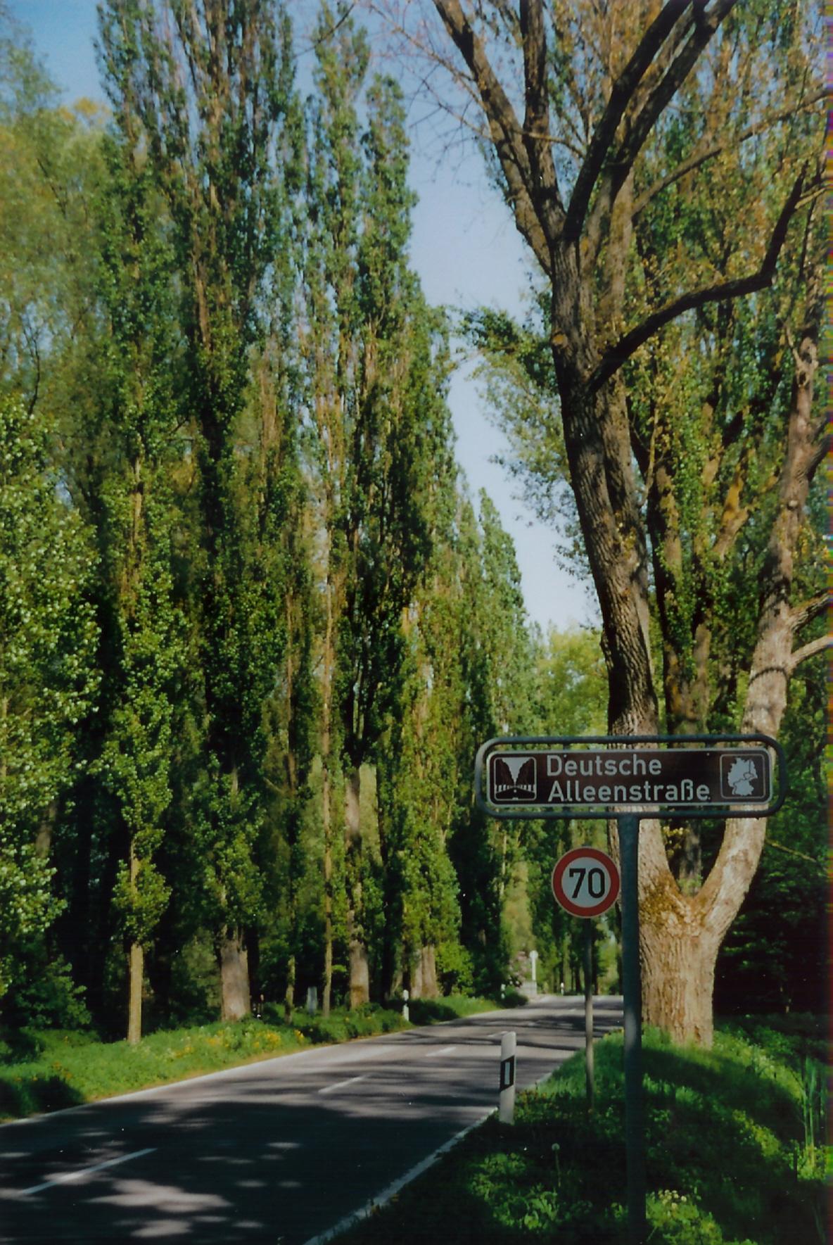 avenue deutsch