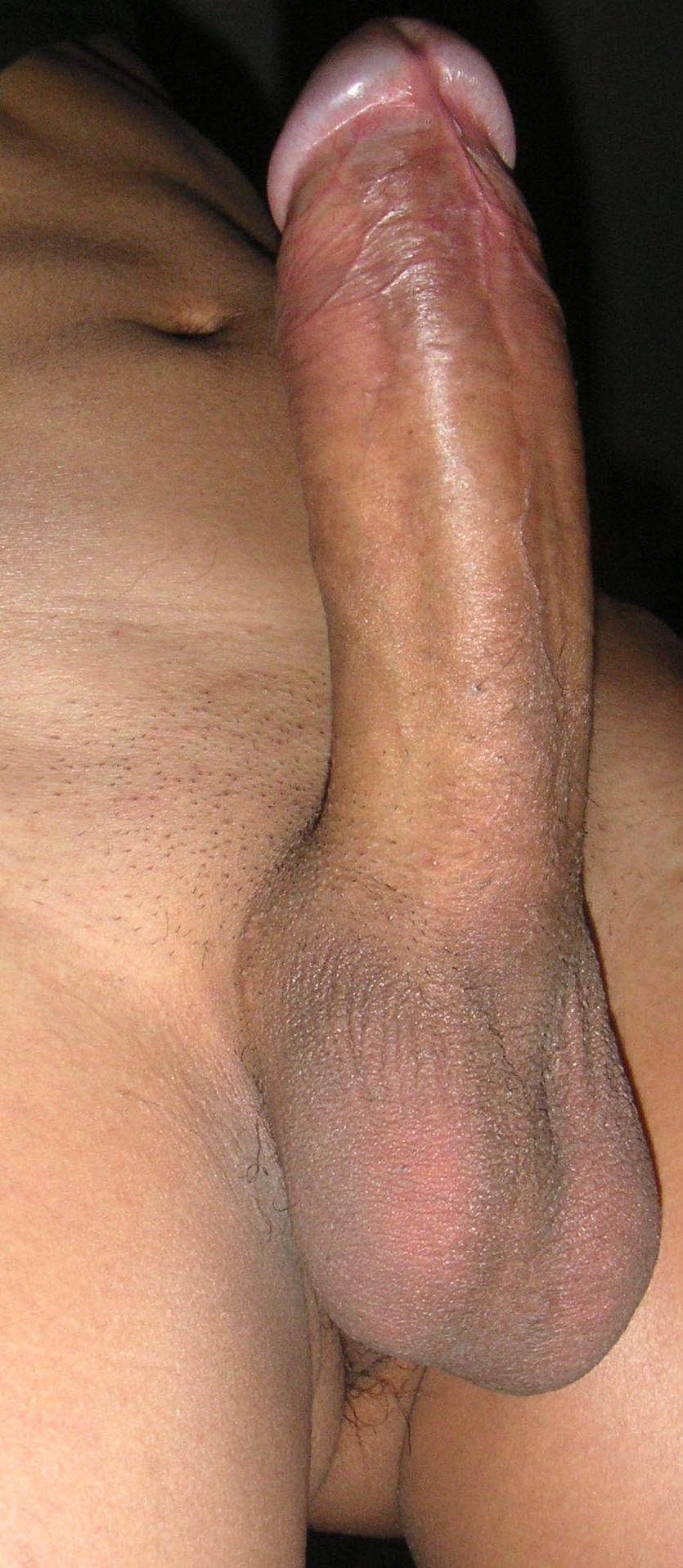 Normal dick porn