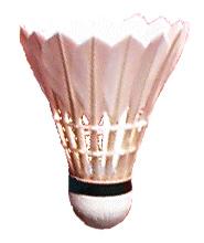 https://upload.wikimedia.org/wikipedia/commons/4/46/Federball_natur.jpg