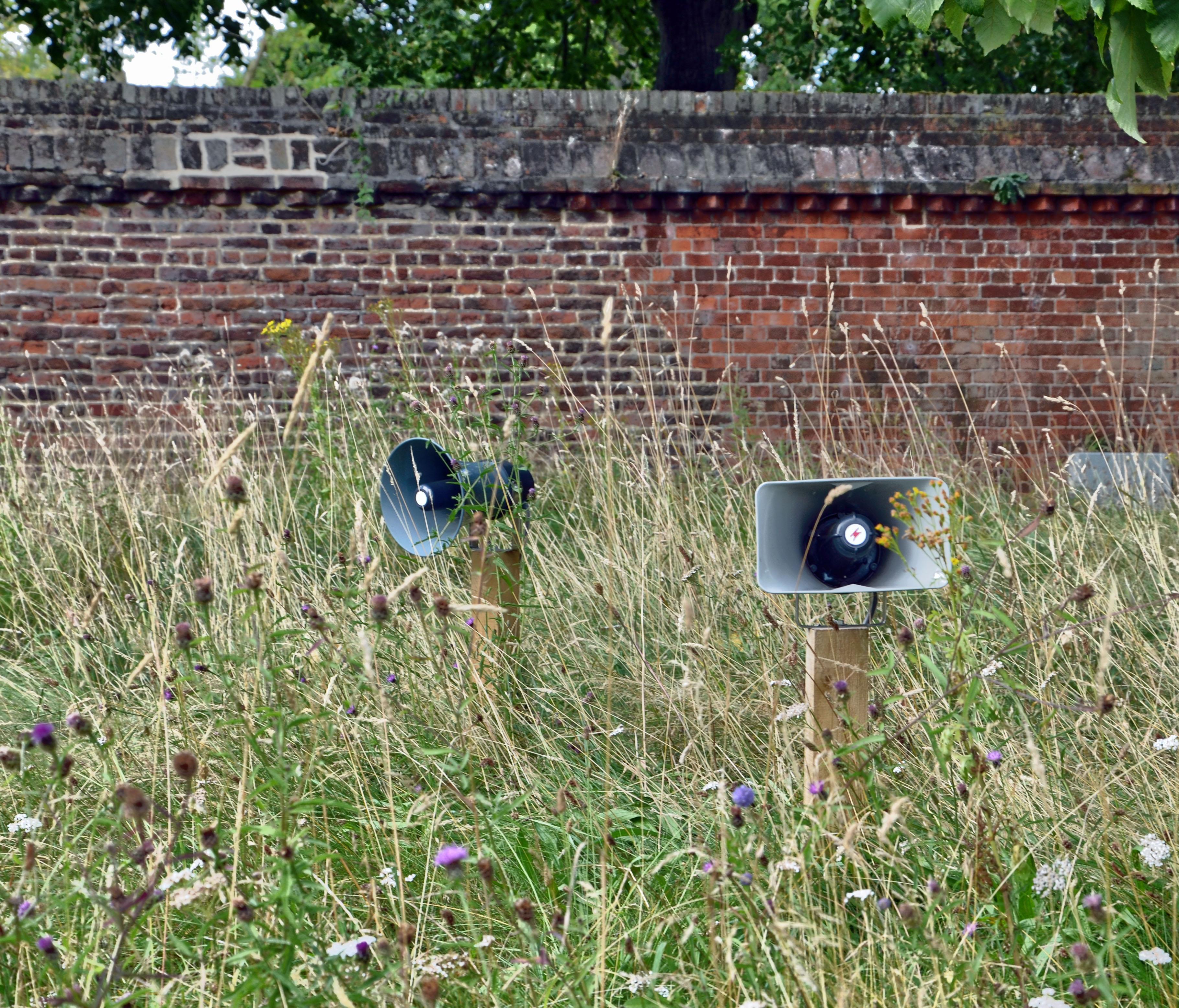 Abandoned Teletubbies Set.jpg