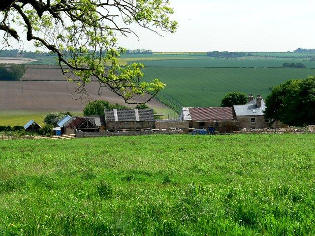 flower hill farms