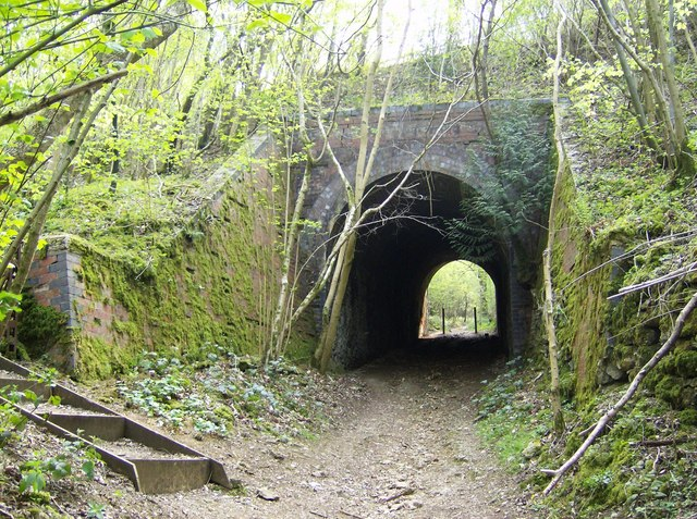 Former railway bridge in Chedworth Woods - geograph.org.uk - 447752