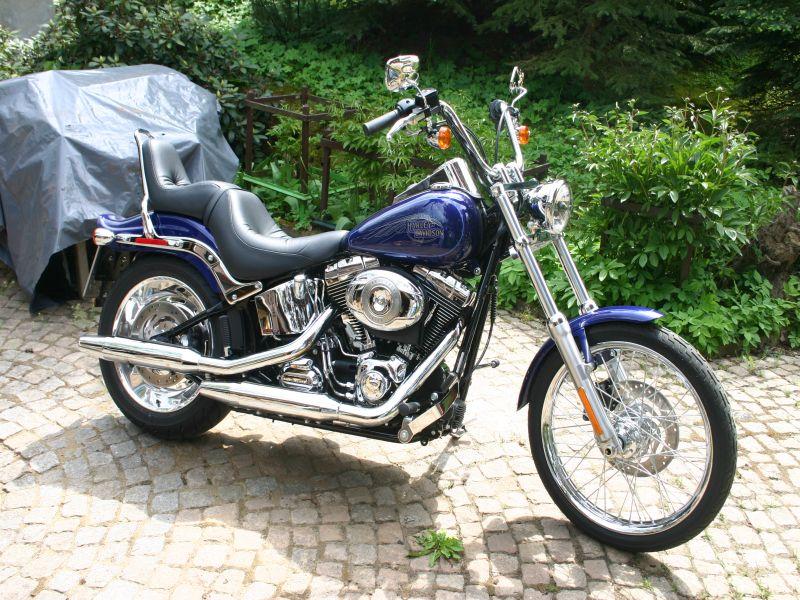 Guidon Harley Davidson Homme