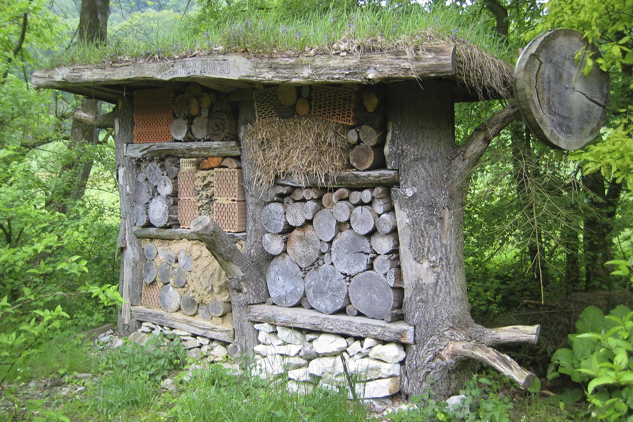 File insektenhotel am waldhaus durbeke im sechsten jahr for Atemberaubende gartenideen