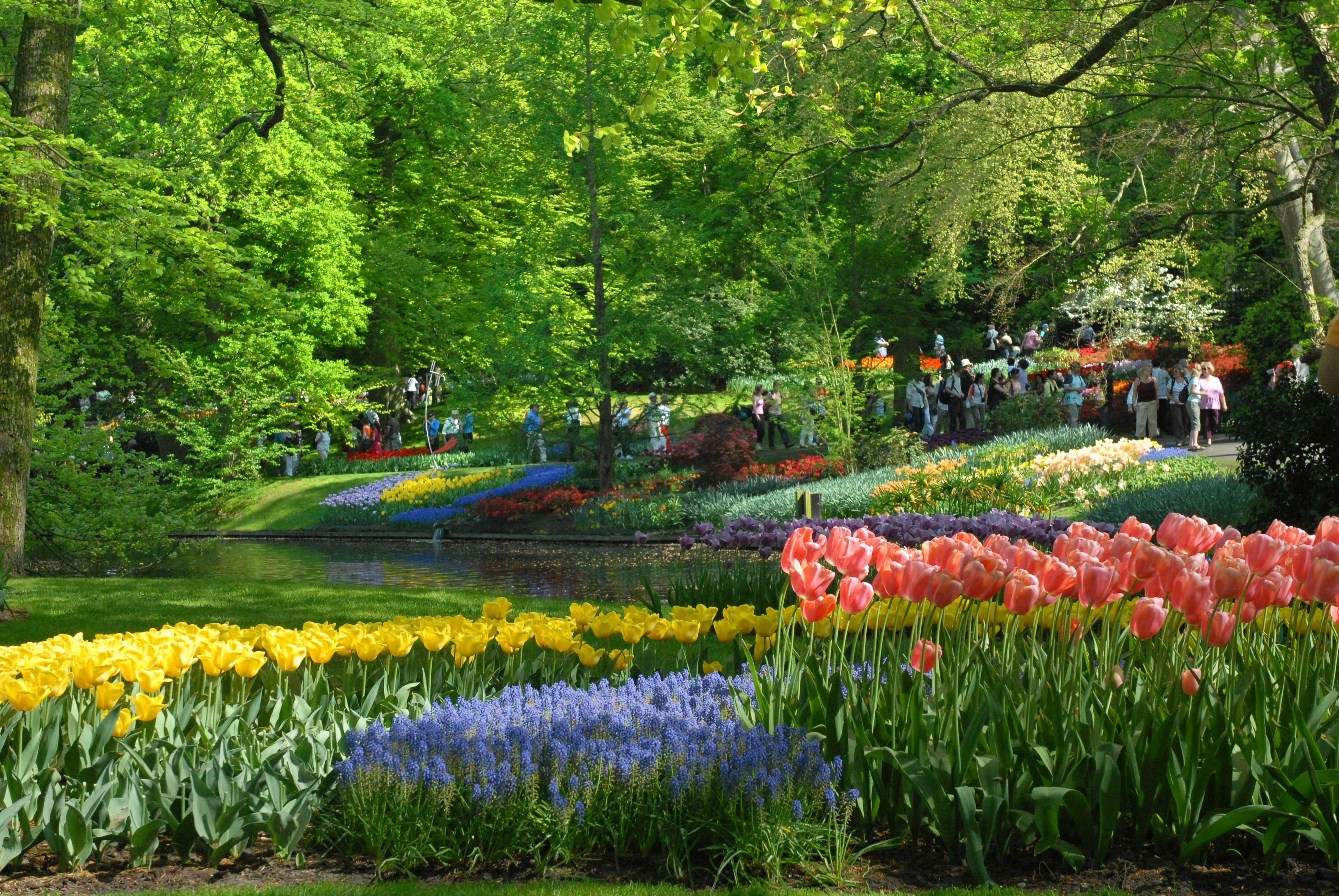 Los jardines de keukenhof pa ses bajos blog de viajes for Jardin keukenhof 2015