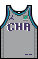 Kit body charlottehornets city.png