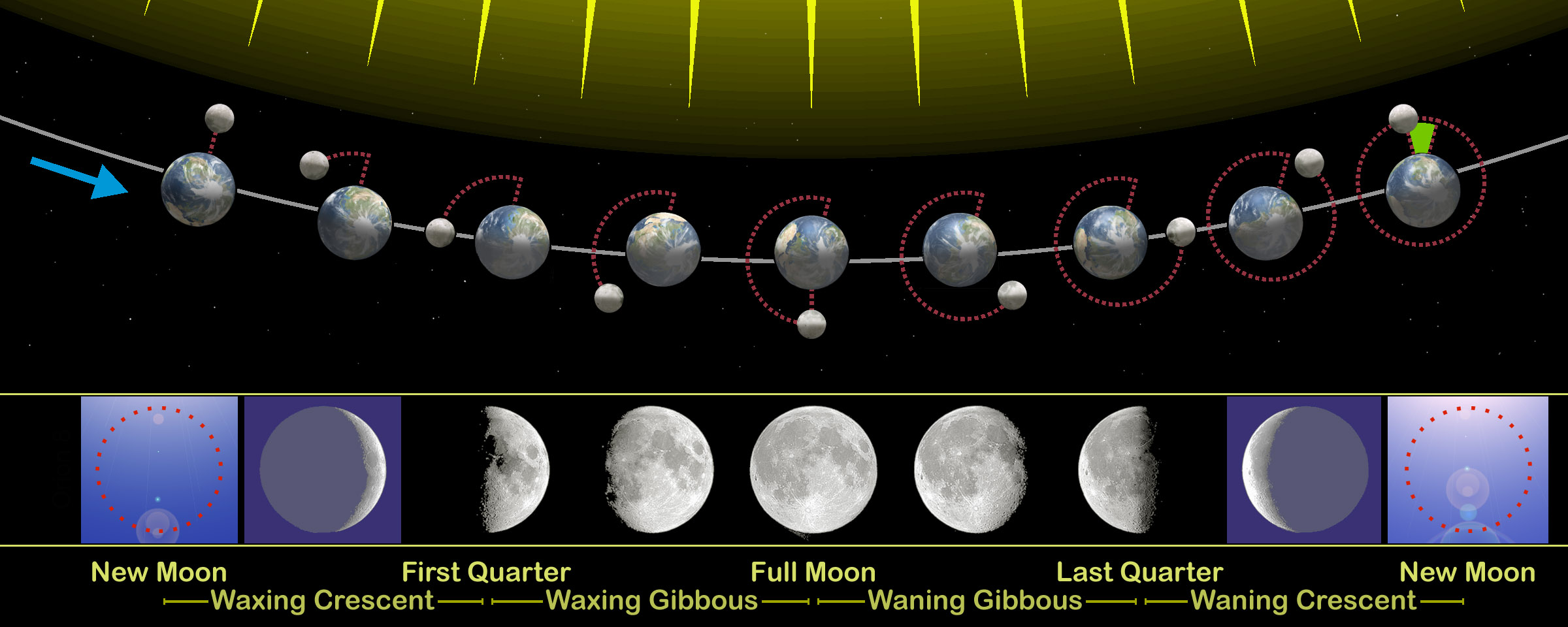 Filemoon phases eng wikimedia commons filemoon phases eng pooptronica Choice Image