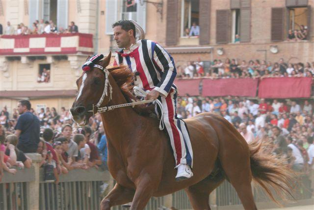 Palio di Siena 2008 (3)