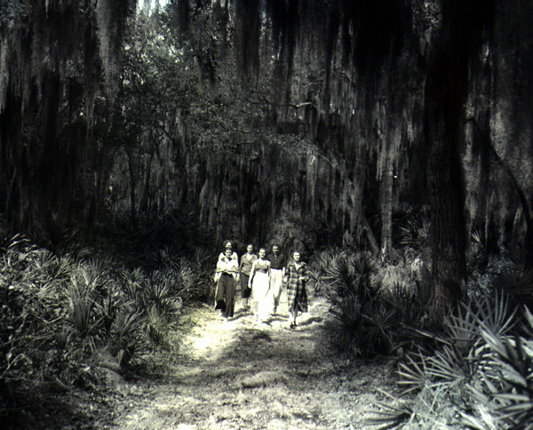 File:People walking through the forest (3247306205).jpg