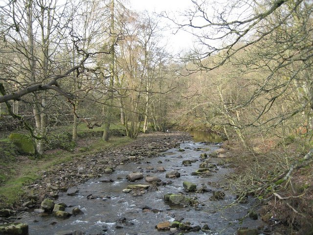 River Wear at Stanhope - geograph.org.uk - 954085