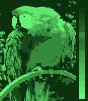 Screen color test AmstradCPC 16colors mono.png