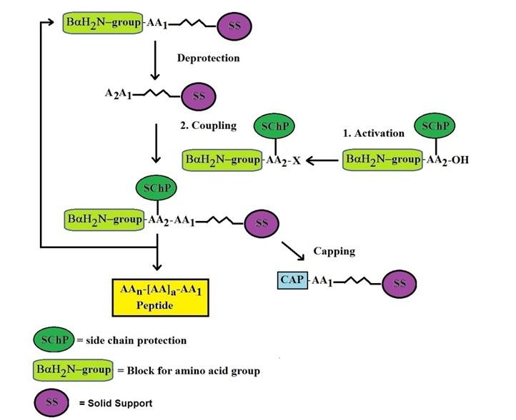Production process flow chart template