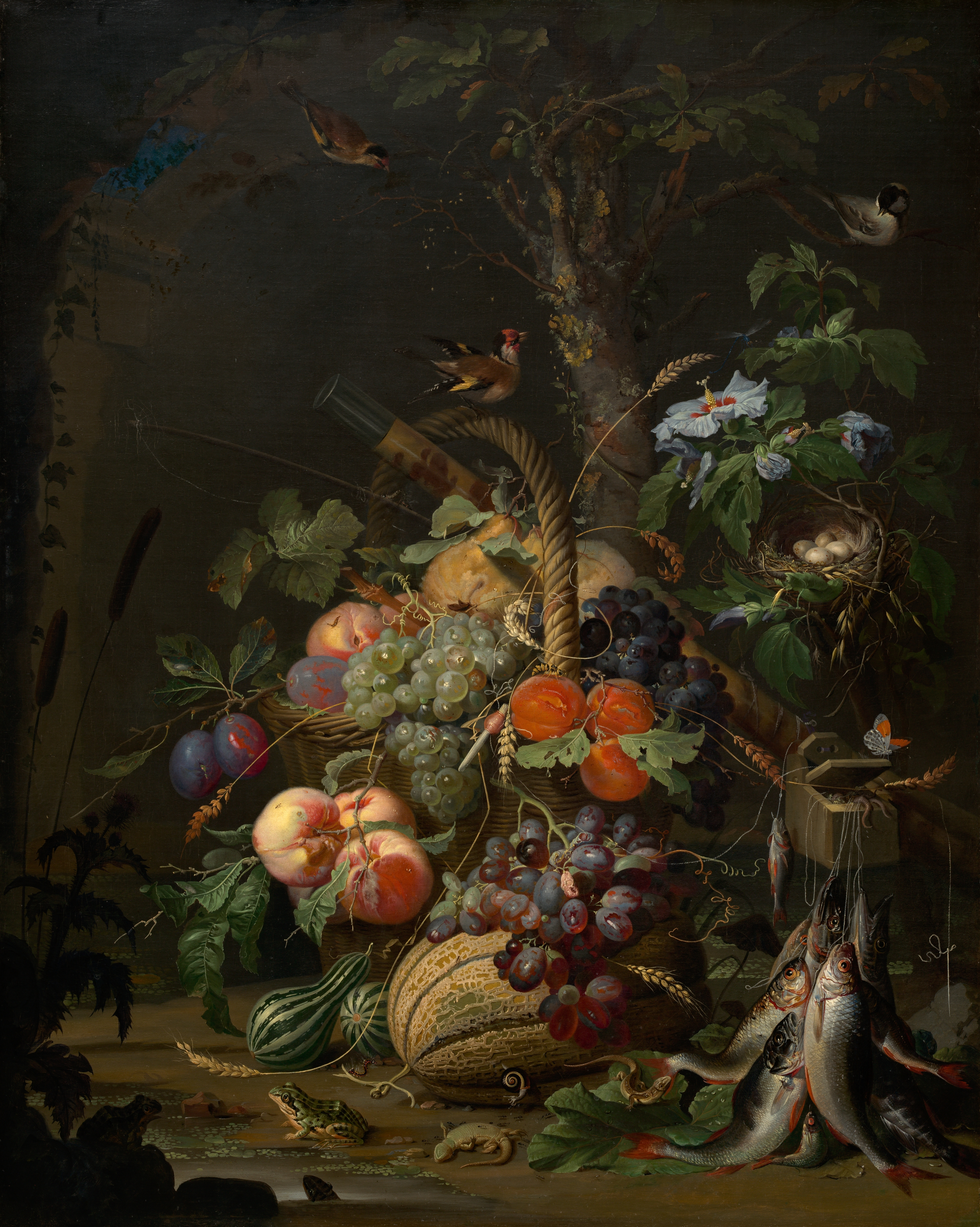 Still_Life_with_Fruit%2C_Fish%2C_and_a_Nest_A11777.jpg
