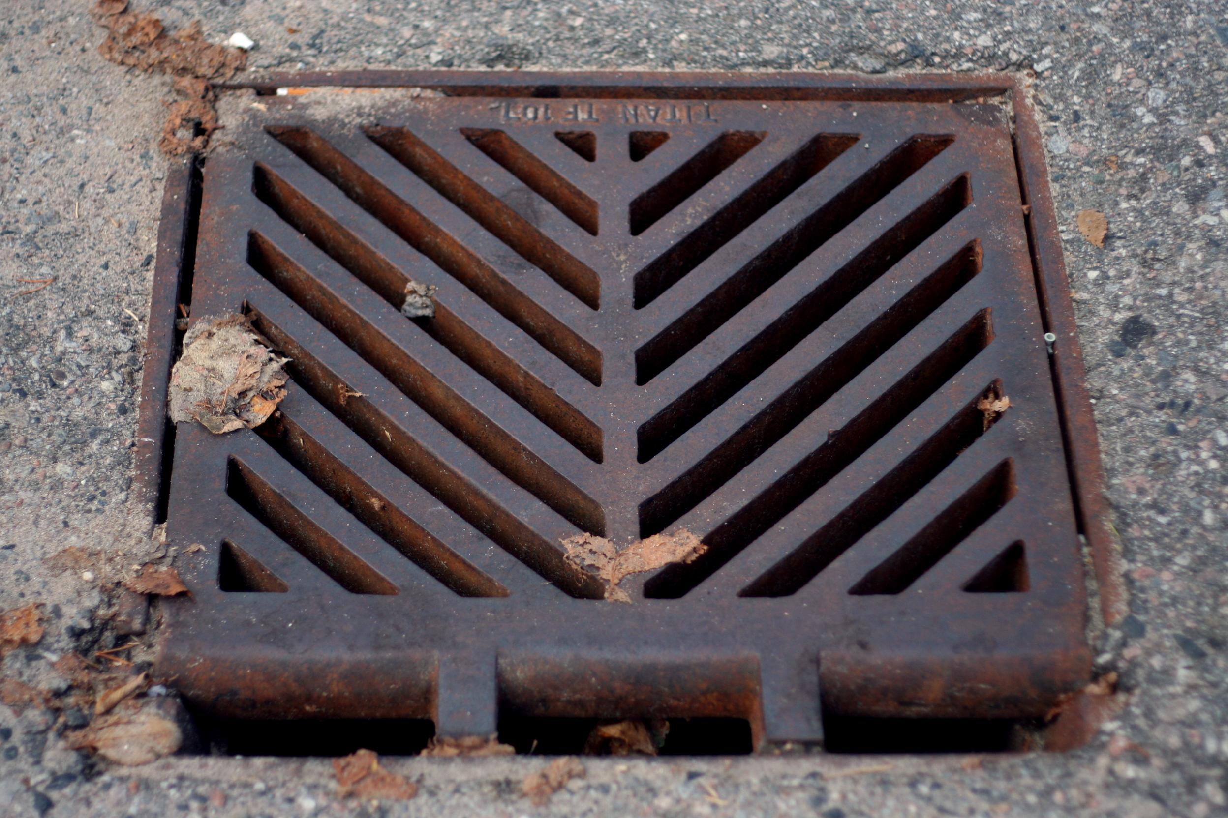 Image result for dirty storm drain