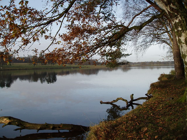 Tatton Mere (Tatton Park) - geograph.org.uk - 78592