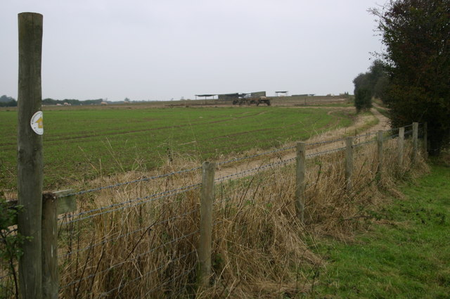 The Bernwood Way crosses the farm track - geograph.org.uk - 708992