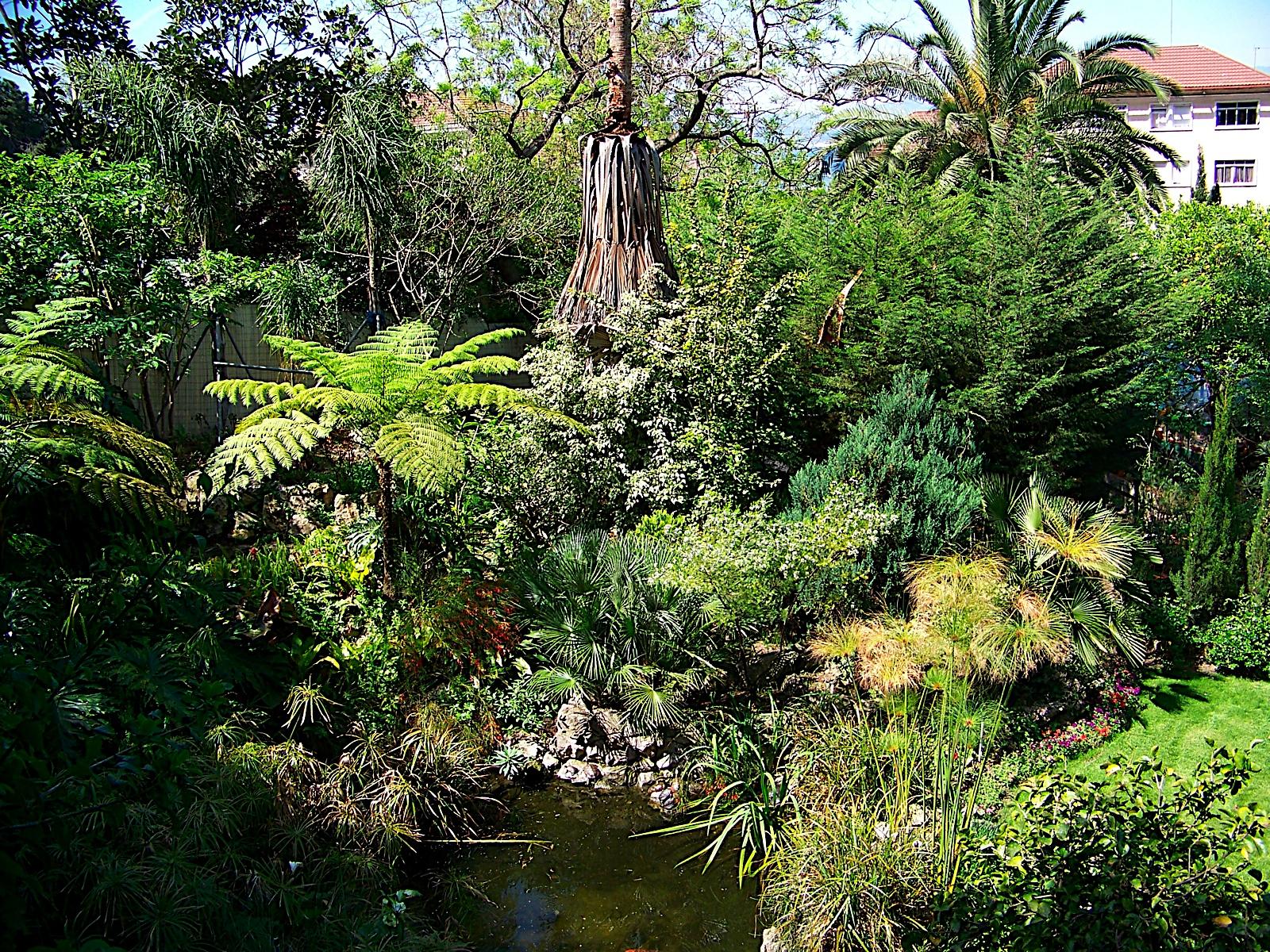 Genial File:The Dell, Gibraltar Botanic Gardens 3