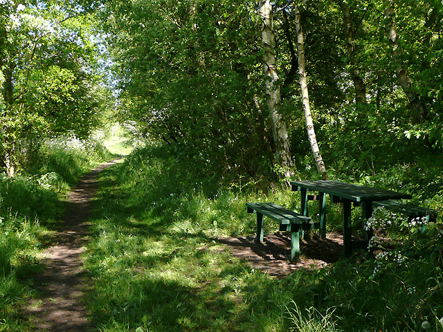 The Millennium Way by Broadhill, Staffordshire - geograph.org.uk - 1903777
