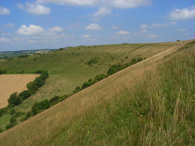 White Sheet Hill - geograph.org.uk - 909704
