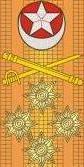 Admiral Pakistan Navy Insignia