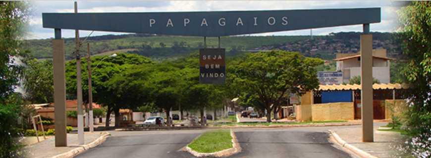 Papagaios Minas Gerais fonte: upload.wikimedia.org