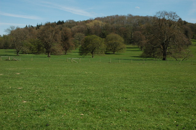 Berrington Park - geograph.org.uk - 1266965